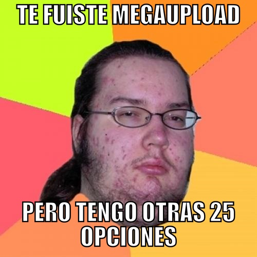 25 Alternativas a Megaupload